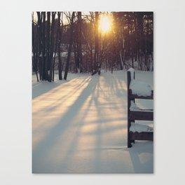 Sun Through the Trees Canvas Print
