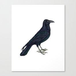 Hark! The Raven Cries! Canvas Print