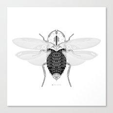 entomology 03. (i) Canvas Print