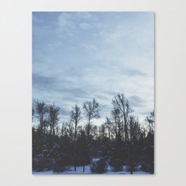 Wintery Hue Canvas Print
