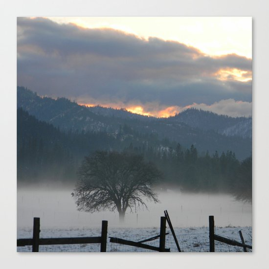Misting Fog in the evening... Canvas Print