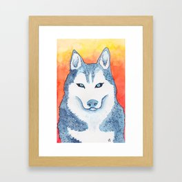 Blue Husky Framed Art Print