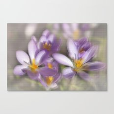 Springtime Dreams Canvas Print