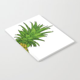 Pi the pineapple Notebook