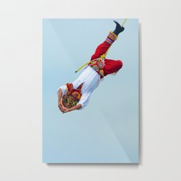 Flying artist collection _05 Metal Print