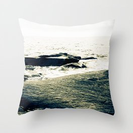 and so we journeyed to the sea, day 5 Throw Pillow
