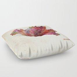 Belgium map Floor Pillow