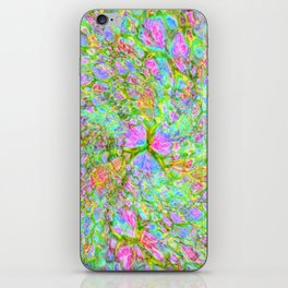 Spring Field iPhone Skin