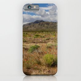 Painted_Desert 0211 - Southwest USA iPhone Case