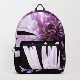 Large Purple Chrysanthemum-1 Backpack