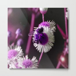 A Shifted Honeybee Metal Print