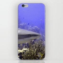 Shark Swimming Past iPhone Skin