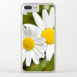 white daisy , flowers. Clear iPhone Case