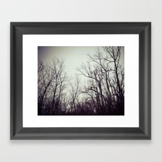Tree branches in the sky Framed Art Print