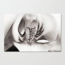 Orchid Closeup II Canvas Print