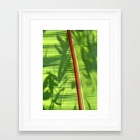 banana leaf Framed Art Prints featuring Banana Leaf by Michael Elliott