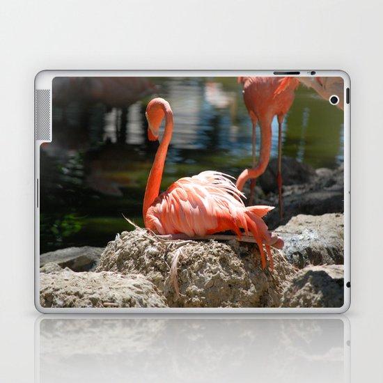 Sitting Flamingo Laptop & iPad Skin