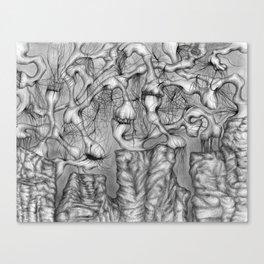 Anomalies I  Canvas Print