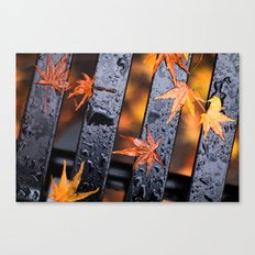 Leaves on a Bench Canvas Print