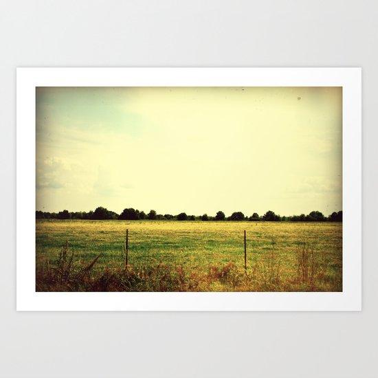 Fields of Fall Art Print