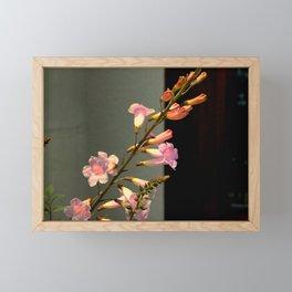 Say It Now...Say It Again Framed Mini Art Print