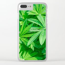 Beautiful green foliage with dew drops on the leaves in sunny day Clear iPhone Case