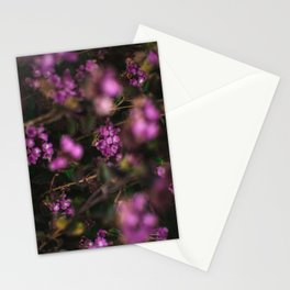 Trailing Lantana Flower Printable Wall Art   Floral Plant Botanical Nature Outdoors Macro Photography Print Stationery Cards