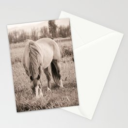 A Nibble Stationery Cards