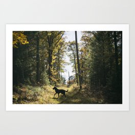 A Walk with Charlie Art Print