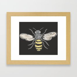 Beneficial Bumblebees Framed Art Print