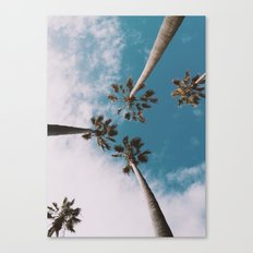 Palm trees 3 Canvas Print