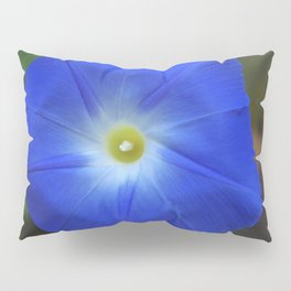 Blue, Heavenly Blue morning glory Pillow Sham