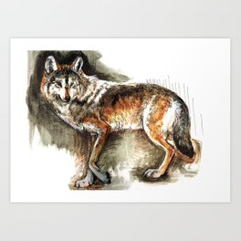 Totem Mexican Wolf ( Watercolor ) Art Print