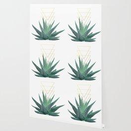 Succulent geometric Wallpaper