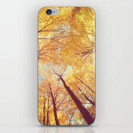 Fall Forest Skies iPhone Skin