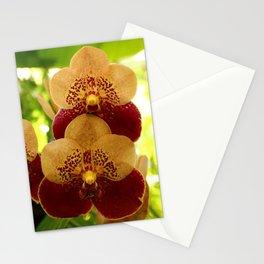 Joy And Happyness Stationery Cards