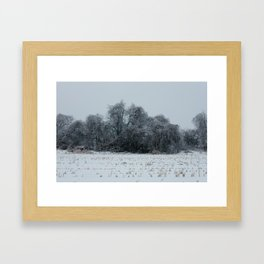 2013 Ice Storm 3 Framed Art Print