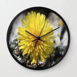 Fallen Dandelion Wall Clock