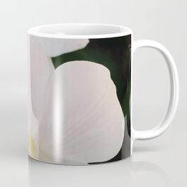 Ascocenda Coffee Mug