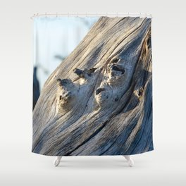 Trunk Shower Curtain