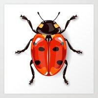 Ladybird beetle Art Print