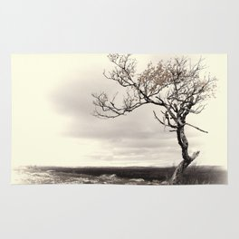Lonely Tree #5 Rug