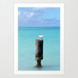 Seagull on a Pole in the Caribbean Art Print