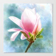 A Spring Feeling Canvas Print