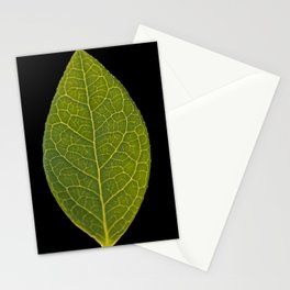 Macro of a Blueberry Leaf Stationery Cards