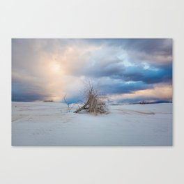 Adrift - Lone Tree In White Sands New Mexico Canvas Print