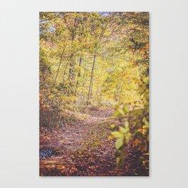 Take a Skip Canvas Print