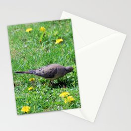 Dove in the Dandelions Stationery Cards