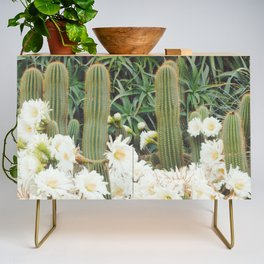 Cactus and Flowers Credenza