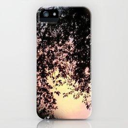 """ Intervention "" iPhone Case"